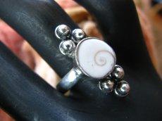 画像2: インドの聖なる貝シヴァアイの指輪リング19号*エスニック*ヨガ (2)