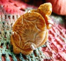 画像1: 超BIG!!1点物手彫り亀さんフォシルコーラル指輪12号*珊瑚化石 (1)