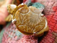 画像5: 超BIG!!1点物手彫り亀さんフォシルコーラル指輪12号*珊瑚化石 (5)