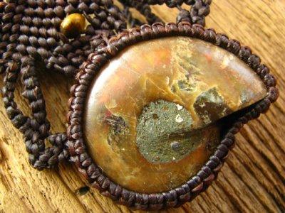 画像1: 大地との繋がりを深める大きなアンモナイト化石とタイガーアイのマクラメ編みネックレス/一部オパール化