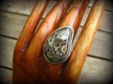 画像2: レア希少ツリテラ瑪瑙リング指輪10号*巻貝化石レアストーン (2)
