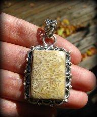 画像1: ナチュラル♪フォシルコーラルのペンダントトップ*珊瑚の化石 (1)