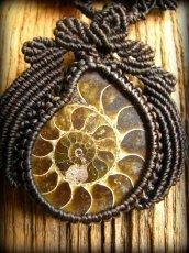 画像3: マダガスカル産大ぶりアンモナイト化石のハンドメイド手編みネックレス*アンモライト*マクラメ (3)