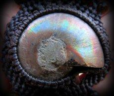 画像11: マダガスカル産アンモナイト化石&タイガーアイのブレスレット*マクラメ (11)