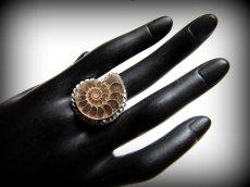 画像4: アンモナイト化石シルバーリング指輪15号*エスニック (4)