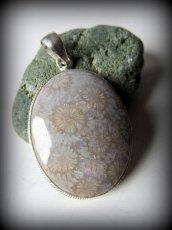 画像1: 特大フォシルコーラル珊瑚化石ペンダントトップ*シルバー*パワーストーン天然石サンゴ珊瑚 (1)