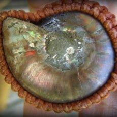 画像6: 1点物 アンモナイト化石&ルチルクォーツ&ムーンストーン ネックレス/一部オパール化 マクラメ編みジュエリー (6)