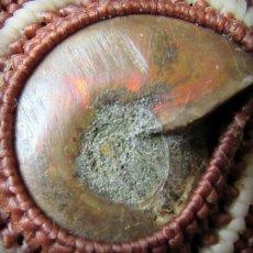 画像11: 1点物 大ぶりアンモナイト化石ネックレス*チョーカー*グラウンディング*マクラメ天然石アクセサリー (11)