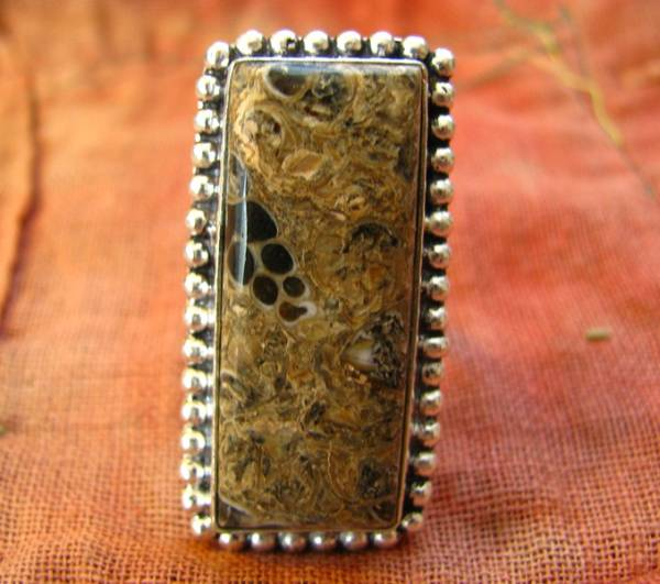 画像1: レア希少ツリテラ瑪瑙リング指輪11号*巻貝化石レアストーン (1)